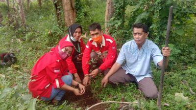 Formma Gelar Aksi  Penanaman 100  Bibit Pohon